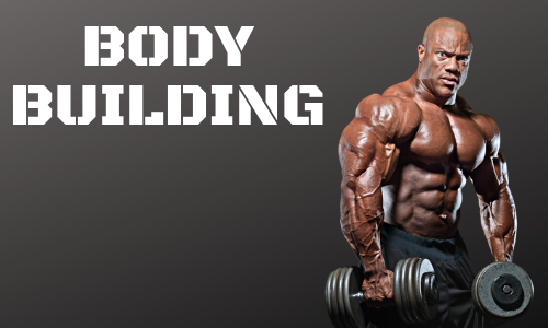 BODY BUILDING MUSCLE MAKER WORKOUTS