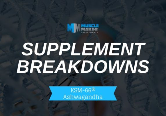 SUPPLEMENT BREAKDOWNS. KSM-66® Ashwagandha